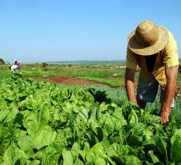 FEIRA NACIONAL DE REFORMA AGRÁRIA PODE ENTRAR NO CALENDÁRIO TURÍSTICO DO ESTADO