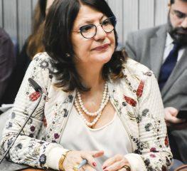 Tucanos vetam projeto constitucional do PT