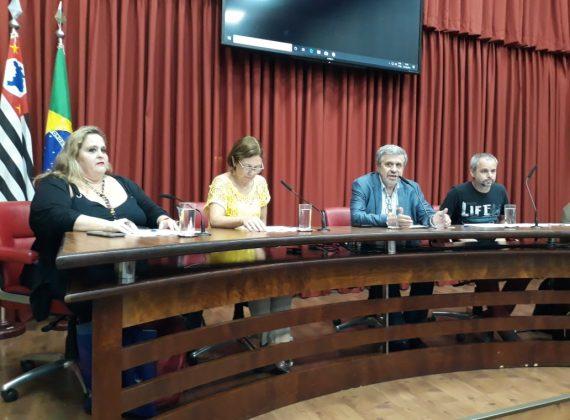 AUDIÊNCIA BUSCA GARANTIR LEI SOBRE ATENDIMENTO DE ASSISTENTES SOCIAIS E PSICÓLOGOS NAS ESCOLAS